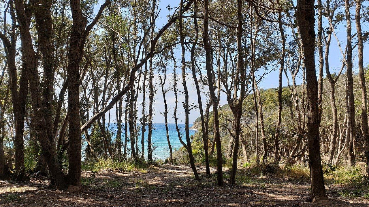 Cala Violina - Resort Capalbio