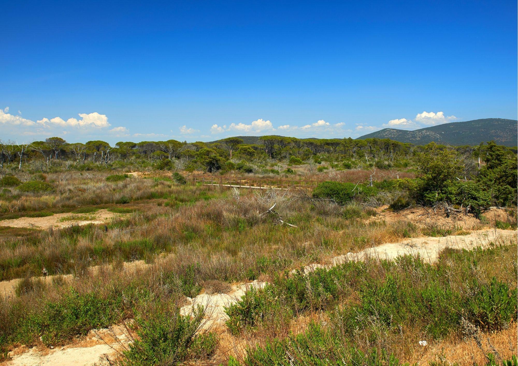 Parco dell'Uccellina Parco Naturale della Maremma